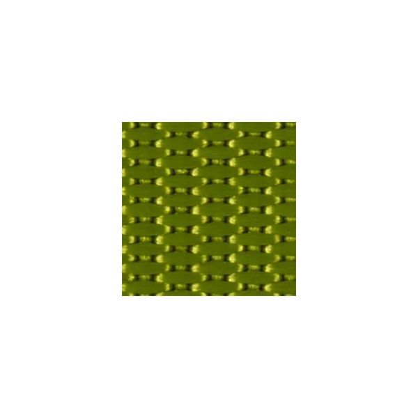 Gurtband Standard hellgrün